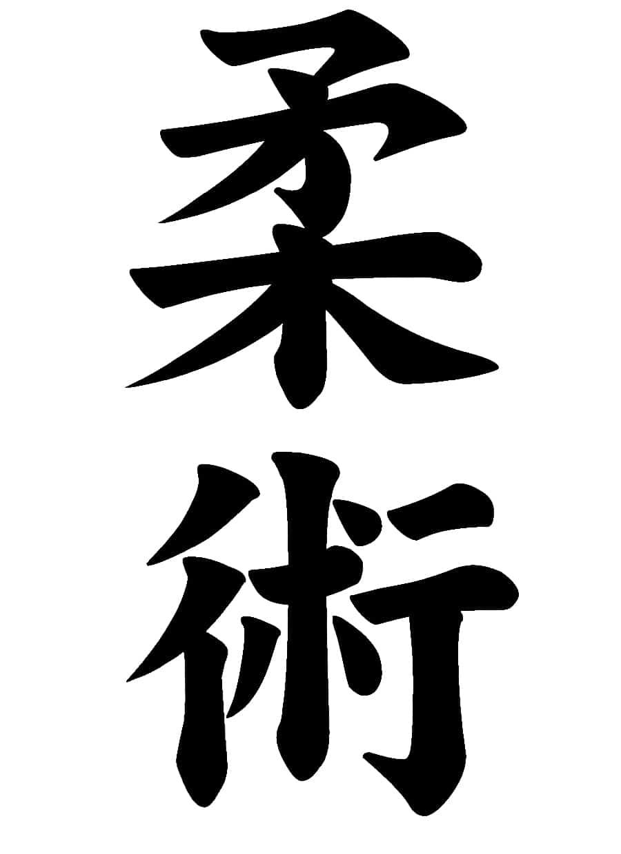 Jiu-Jitsu   What Does It Mean?